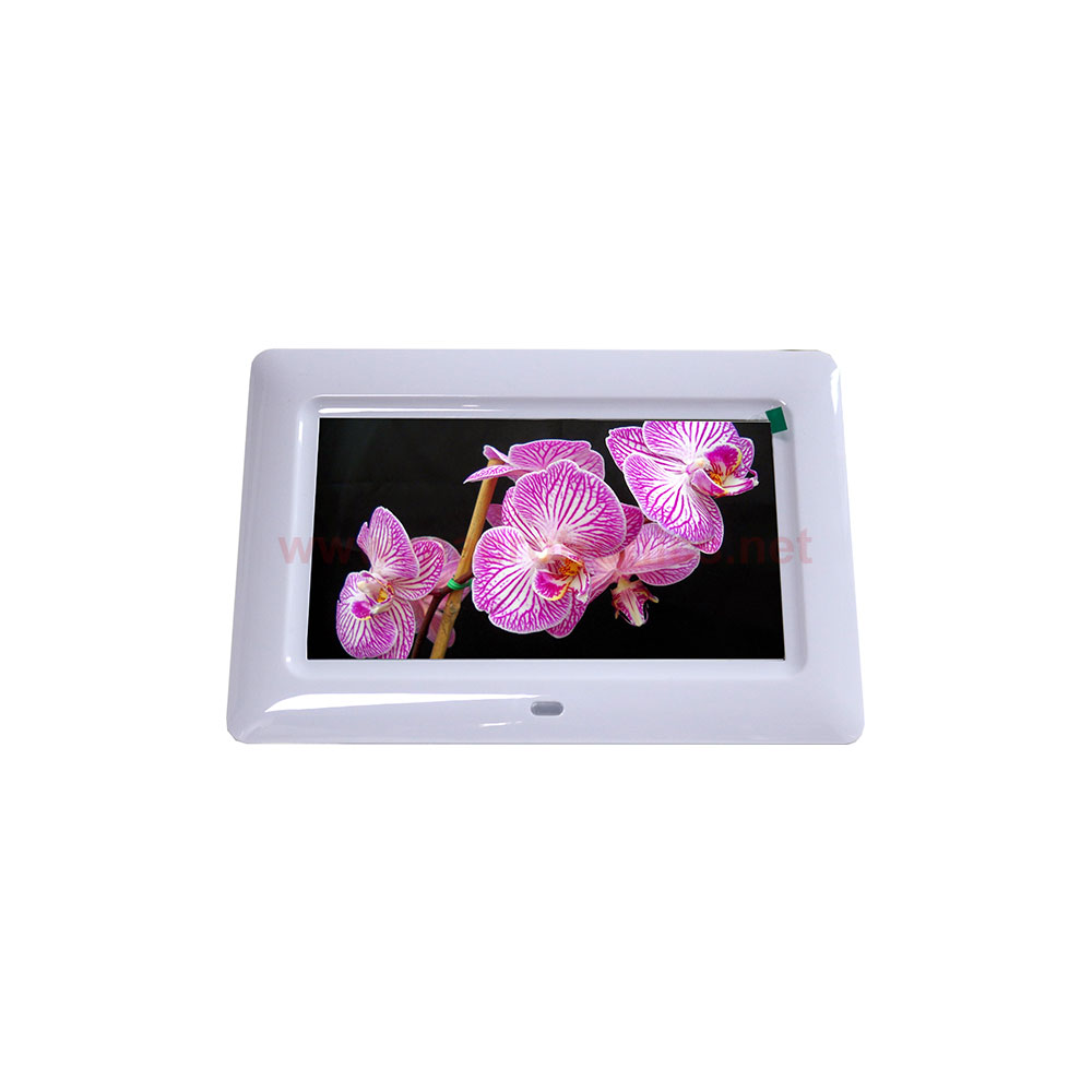 Conqueror 7-inch Digital Photo Frame White - M215 - Photography ...
