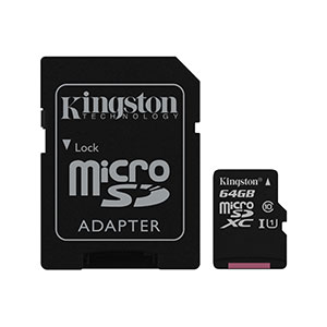 Kingston SDCS 64GB Micro-SD Card Class 1